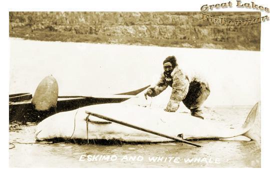 Inuit1.jpg