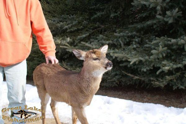 me_and_baby_button_buck.jpg