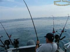 fishon_451810.jpg