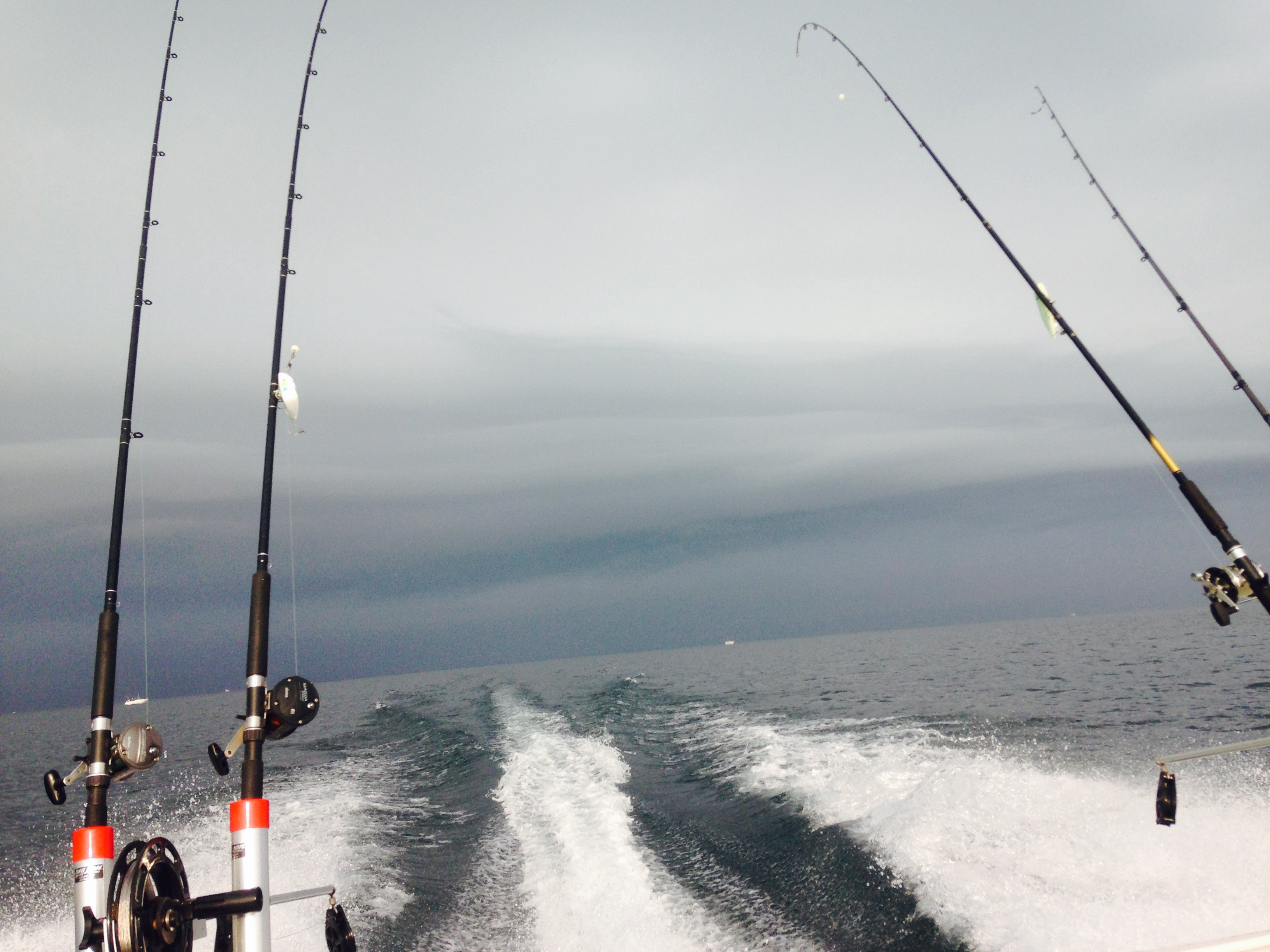 Lake huron fishing reports salmon and trout great tattoo for Michigan dnr fishing report