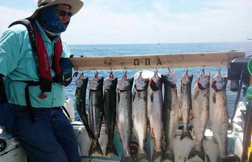 salmon 6-15-17.jpg